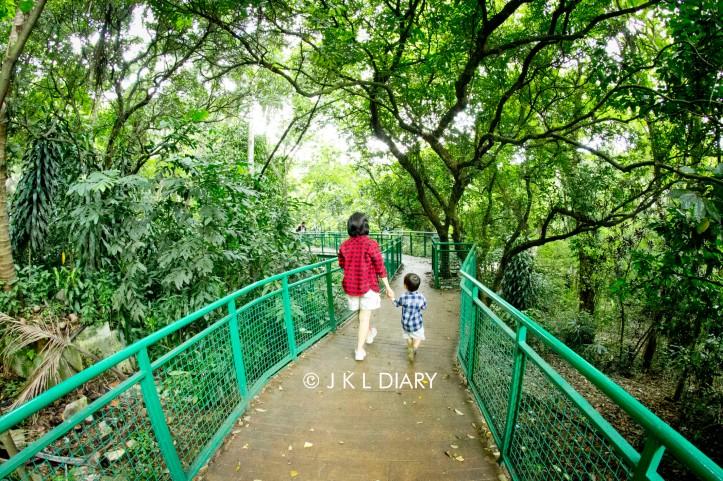 05 Forest Walk Babakan Siliwangi sw