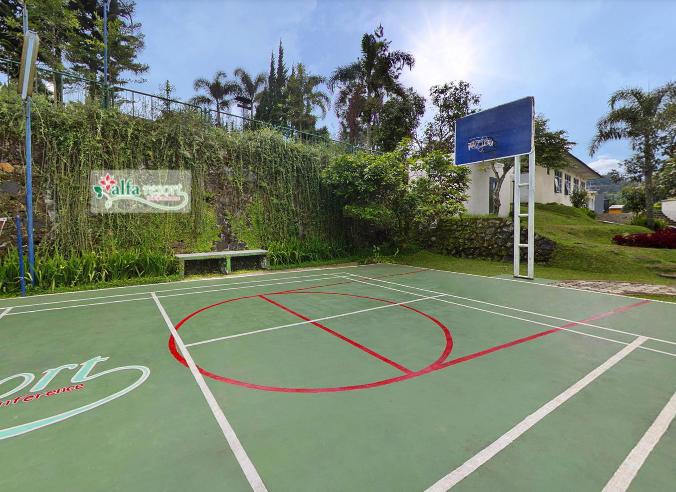 Alfa Resort Basket